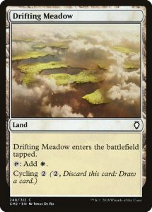 magic the gathering drifting meadow