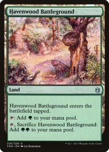 magic the gathering havenwood battleground